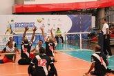 Voleibol sentado (Foto: CBVD)